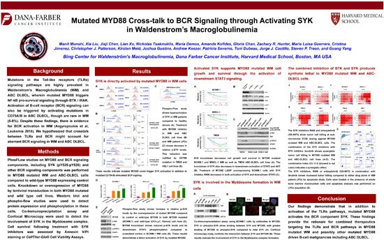 Mutated MYD88 Cross-talk to BCR Signaling through Activating SYK in Waldenstrom's Macroglobulinemia